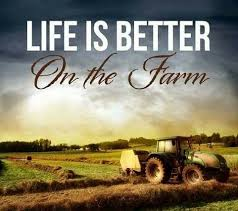 Farm Life Quotes Amazing Farm Life Quotes Simple The 48 Best Farm Girl Quotes Ideas On