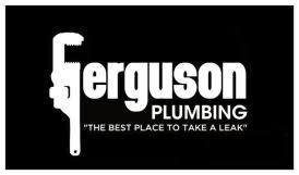 ferguson plumbing llc green valley az 520 307 5408