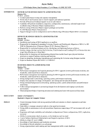 Business Objects Resume Business Objects Administrator Resume Samples Velvet Jobs 72