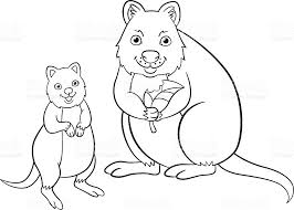 Small Picture Coloring Pages Mother Quokka With Her Cute Baby stock vector art