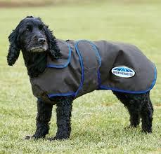 Weatherbeeta 420d Deluxe Lite Dog Windbreaker Grey Blue