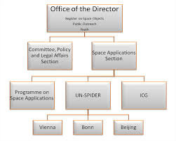 United Nations Organizational Chart Structure
