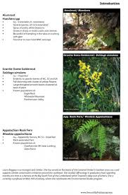 Rare Plant Identification Carolina Climbers Coalition