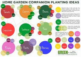 Vegetable Companion Planting Charts 30 Companion Planting Chart For Vegetables Tate Publishing