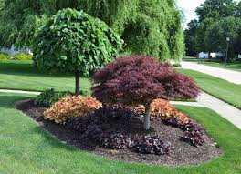 Small Picture Best 25 Landscape around trees ideas on Pinterest Landscaping