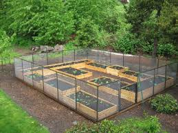 Small Picture 68 best Raised Bed Gardens images on Pinterest Gardening