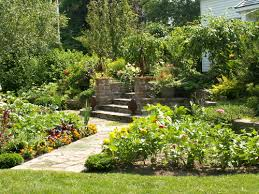 Small Picture Edible Landscaping KG Landscape Management