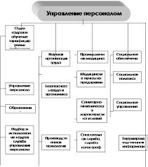 Управление персоналом отдела маркетинга предприятия Структура службы управления персоналом крупной фирмы