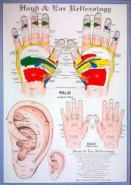 Ear Acupressure Hand Reflexology