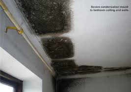 Photo 3 Of 8 Condensation On Ceiling In Winter #3 Condensation U0026 Mould  Control
