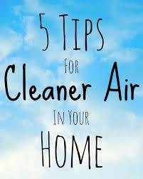 Image result for clean air in your home