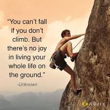 Quotes About Climbing Custom Can't Fall If You Don't Climb Climbing Quotes Pinterest