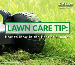 Lawn Care Tip How To Mow In The Heat Of Summer Turf Care