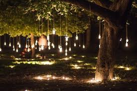 Definitely using my mason jars for my of July party in the tree! Mason jar  lanterns hanging from trees on both sides of property.so so pretty!