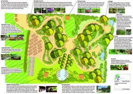 Small Picture Ecospaces Wildlife Gardens for Schools Ecospaces wildlife