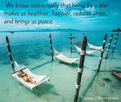 Image result for it is not happiness that makes us grateful ocean pic