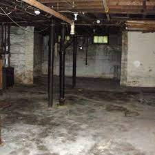 how to get rid of musty basement smell