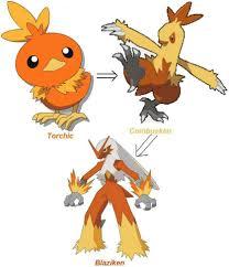 Torchic Evolution Pokemon Starters Pokemon My Pokemon