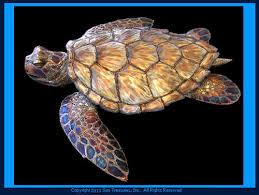 sea turtle metal wall art sculpture