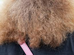 what causes frizzy hair causes how it
