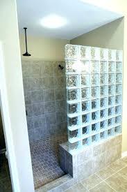 glass block shower glass blocks design glass block ideas bathrooms glass block showers small bathrooms wall
