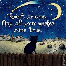 Sweet Dream Quote Best of 24 Best Good Night Images On Pinterest Good Night Have A Good