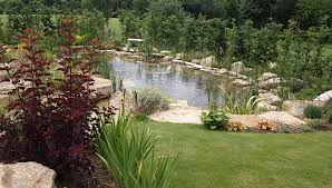 Garden Ponds Designs Design