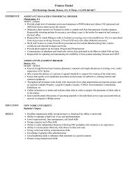 Sample Insurance Assistant Resume Broker Assistant Resume Samples Velvet Jobs 15