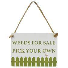 vegetable row novelty mini garden tools