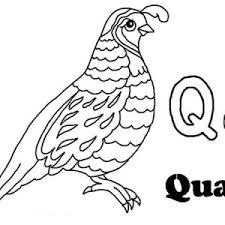 Small Picture Alphabet Letter Q Coloring Page for Preschool Kids Bulk Color