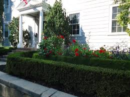 file marblehead massachusetts house and hedge and flowers jpg