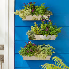 wall mounted planters with variegated oregano vinca parsley antennaria scented geranium