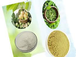 Зеленый чай 2000 мг <b>Гарциния Камбоджийская 1000</b> мг сильная ...