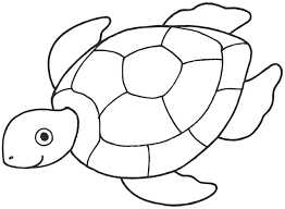 turtle coloring pages.  Coloring To Turtle Coloring Pages T