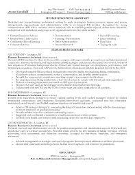 Human Resources Resume Sample Mulhereskirstin Info