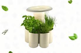 hydroponic herb garden. Calla, An Indoor Hydroponic Herb Planter Garden L