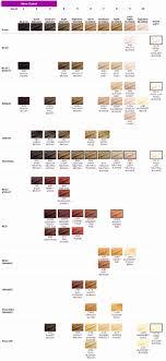 Detailed Rainbow Henna Hair Color Chart Rainbow Henna Hair