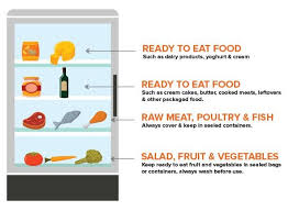 how to food in a fridge diagram