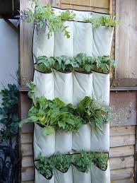 indoor gardening ideas. Cheapest Gardening Idea Old Shoe Organiser 25 Indoor Garden Ideas