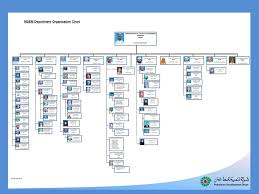 Msem Department Organization Chart Ppt Download