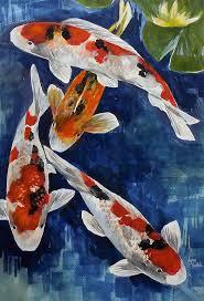 original watercolor painting koi art koi fish koi pond anese koi koi