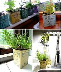 how to make an indoor herb garden. Tea Can Herb Garden How To Make An Indoor Y