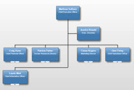 Company Org Chart The Top 7 Org Charts Used By Aussie Business Leaders Navigo