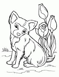 Small Picture Husky Puppy Coloring Pages Coloring Pages