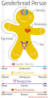breaking through the binary gender explained using continuums  genderb person gender identity explanation graphic