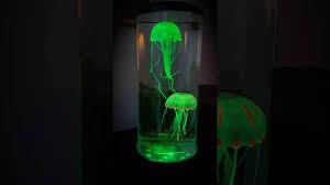 Jellyfish Tank Mood Light Amazon Lightahead Led Jellyfish Lamp Youtube