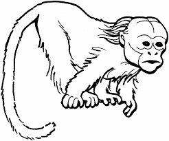 Small Picture Coloring Pages Animals Monkey Coloring Pages