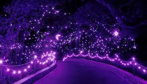 large size of norfolk botanical garden drive through million light holiday show gardens address hours bulb