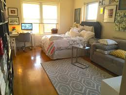 furniture for studio apartment. best efficiency apartment furniture studio layout 17 ideas about small for