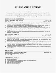 Simple Free Resume Template Examples How To Make Resume Template